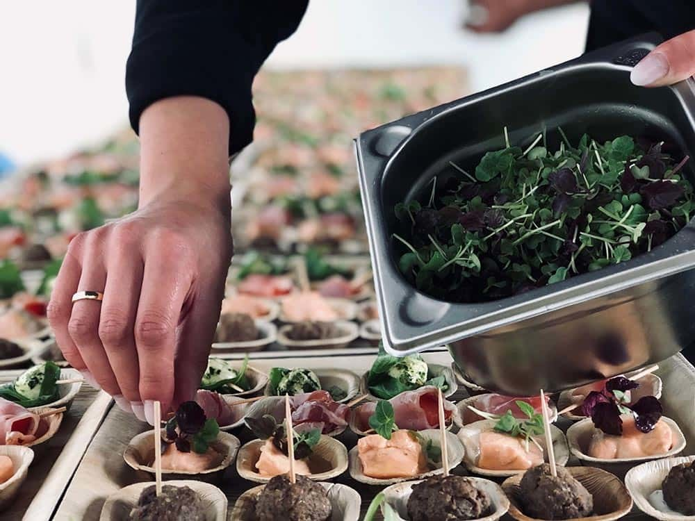 Fingerfood Catering (ab 30 Personen)